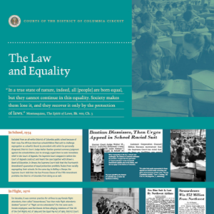 Law and Equality